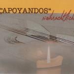 """Weihnachtliche Gitarrenklänge</br>Ensemble """"Apoyandos"""" spielt neues Album ein"""