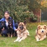 """""""Glückfellchen"""" hilft Hunden</br>Verein setzt sich für Vierbeiner in Rumänien ein"""