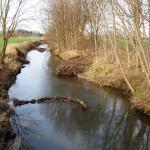 Renaturierung der Aue</br>Fördermittel von Land und Landkreis