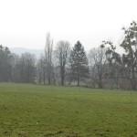 """""""Wir sagen nein zu jeglicher Bebauung""""</br>Initiative zum Schutz der Hofwiesen wieder aktiv"""