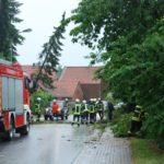 Meinser Straße durch umgestürzte Bäume blockiert</br>Feuerwehr im Einsatz