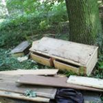 Müll im Wald entsorgt