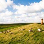 Niedersachsen-Urlaub: Spezielle Tipps für Touristen, die die Region entdecken wollen