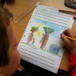 Info-Nachmittag der Immanuel-Grundschule