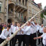 Bürgerbataillon stellt Maibaum auf</br>Traditionelle Feier auf dem Marktplatz