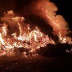 Tannenbrand ein voller Erfolg