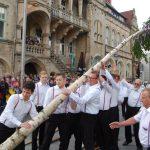 Bürgerbataillon stellt Maibaum auf</br>Buntes Programm mit Blasorchester Bückeburger Jäger