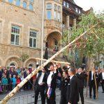 Bürgerbataillon stellt Maibaum auf</br>Traditionelle Maifeier auf dem Marktplatz