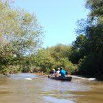 Flussabenteuer in Hannover</br>Urwald-Gefühl für Ruderer auf der Leine