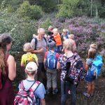 Ferienkinder besuchen Wildtierstation