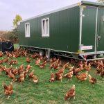 """""""Qualität der Eier soll hervorragend sein""""</br>Ortsrat besichtigt mobilen Hühnerstall Zimmermann"""