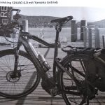 Pedelec von Fahrradträger entwendet
